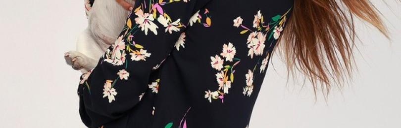 Прямое платье: полный обзор моделей 2019 года