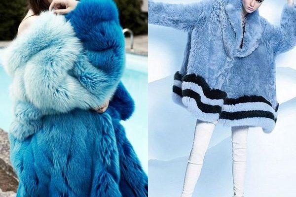 Голубая шуба 2018 года: современные и стильные фасоны